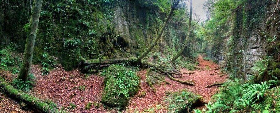Глен – это необъяснимая микродолина, спрятанная на склоне горы Нокнарея