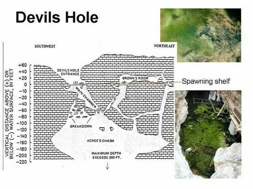 Карта Дьявольской дыры