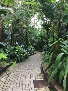 В саду выращиваются самые разные растения, благодрая чему его можно посещать круглый год