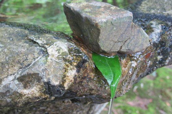 Естественный фонтан