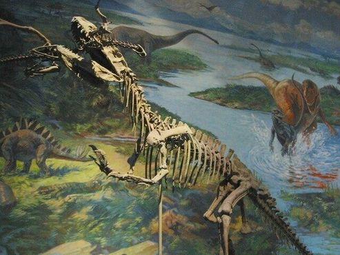 Скелеты динозавров встроены в диораму