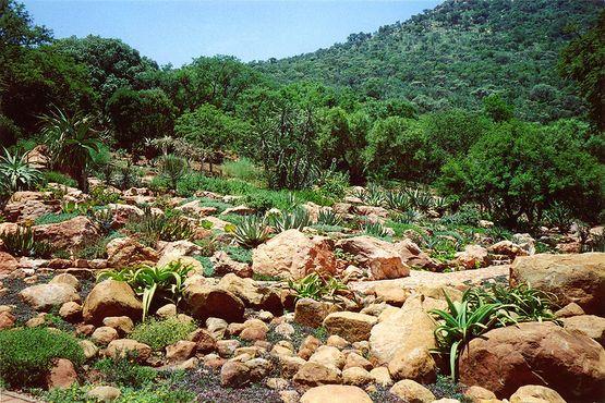 Национальный ботанический садВитватерсранда