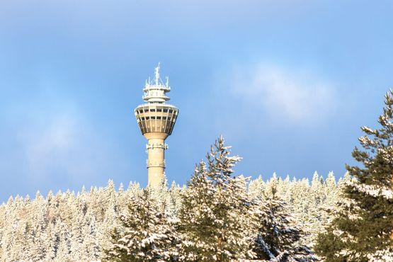 Башня в солнечный зимний день