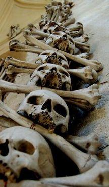 Узор из настоящих черепов и скрещённых костей